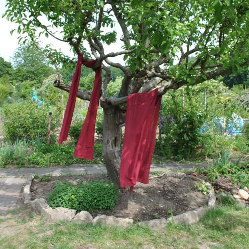 Baum mit rotem Stoff